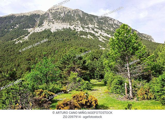 Punta Lierga, Valley of Gistain, Aragonese Pyrenees, Huesca province, Spain