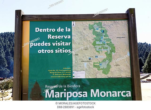 Central America, Mexico, State of Michoacan, Angangueo, Reserve of the Biosfera Monarca Sierra Chincua, where the monarch butterflies (Danaus plexippus)
