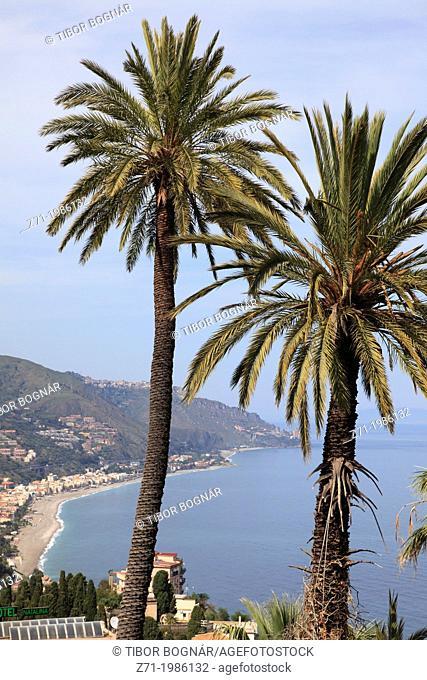 Italy, Sicily, Taormina, palm trees, landscape,