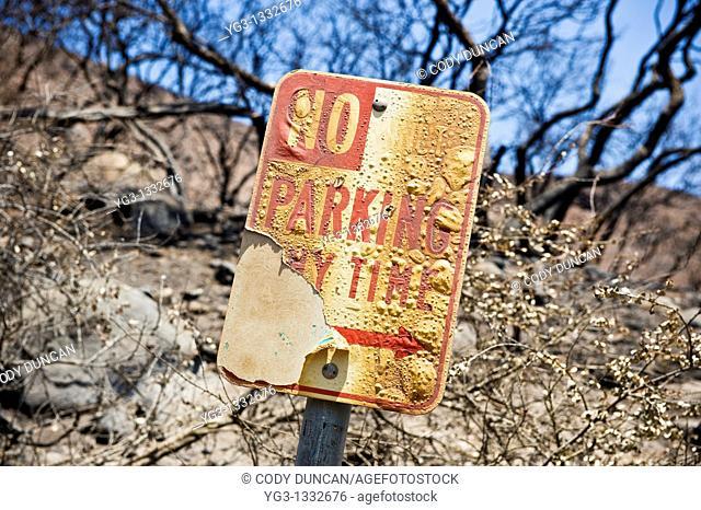 No parking sign burn by Jesusita Fire, Santa Barbara, California  May 2009