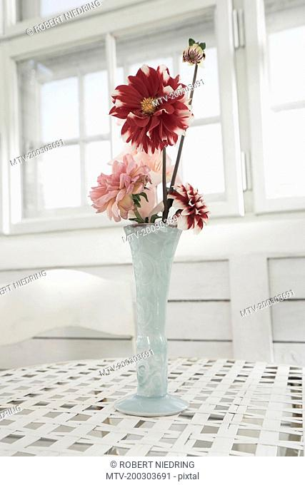 Pink and maroon peony flowers in vase on table at glass house, Bavaria, Germany
