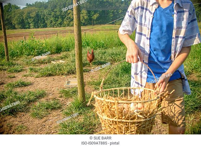 Cropped shot of boy carrying basket of eggs in field