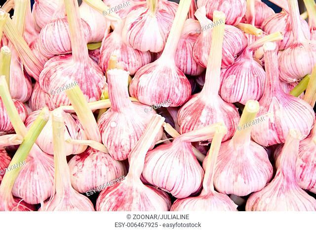 Background of fresh garlic