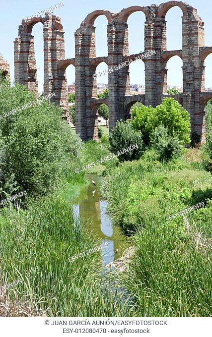 Stork close to Roman Aqueduct of Merida Los Milagros. Extremadura, Spain