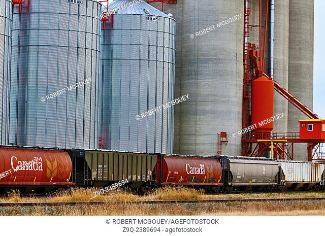 A close up horozontal image of a concrete grain storage and distribution facility in rural Alberta Canada with railway cars in the forground