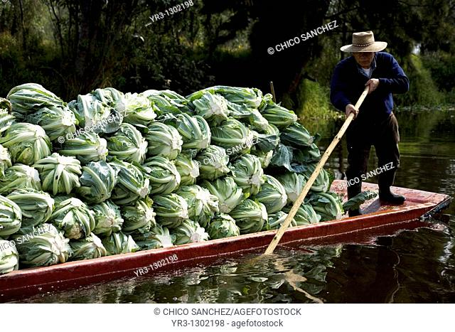 A man carry vegetable in a boat in the water canals of Xochimilco in southern Mexico City, January 18, 2009  The water canals and gardens in Xochimilco was once...
