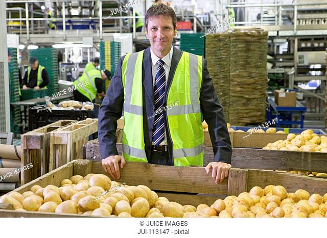 Portrait confident supervisor leaning on bin of fresh harvested potatoes in food processing plant