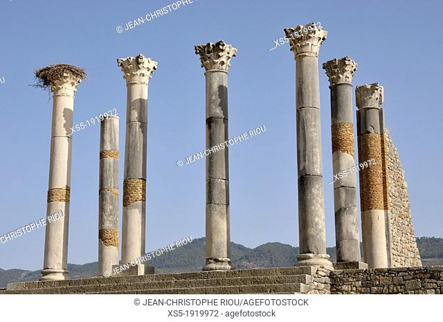 Volubilis, Moulay Idriss, Morocco