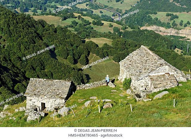 France, Cantal, Parc Naturel Regional des Volcans d'Auvergne Natural Regional Park of Auvergne Volcanoes, Saint Jacques des Blats, Niercombe Buron, Cere Valley