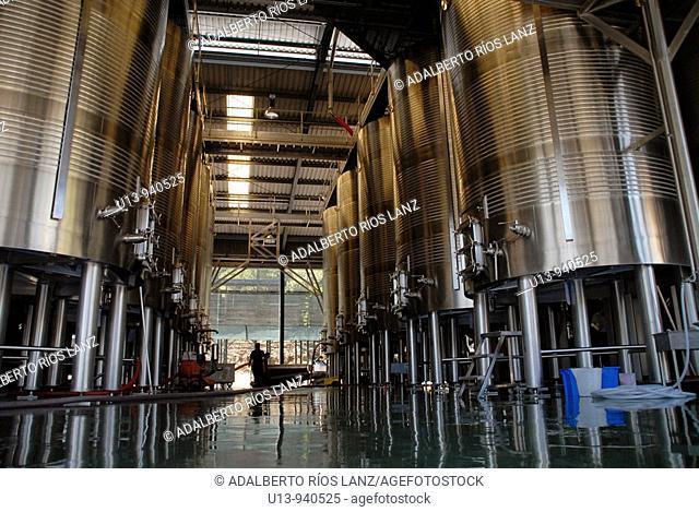 Port Wine Factory Plant Pinheiro Douro Valley Portugal