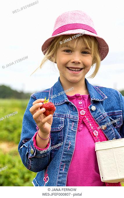 Portrait of happy little girl holding box and strawberry on a strawberry field
