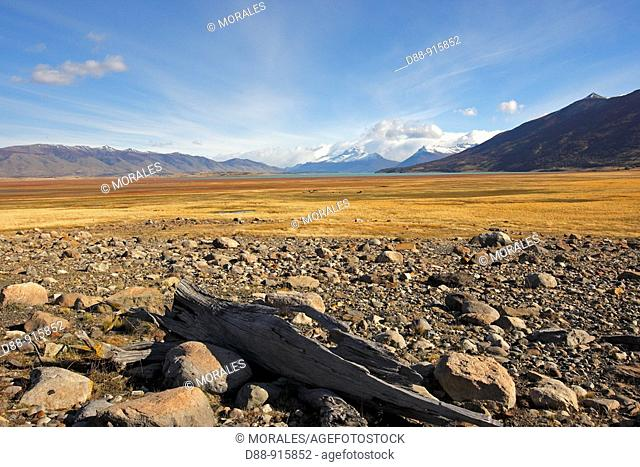 Península de Magallanes, Patagonia, Argentina