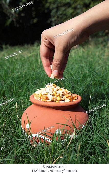 Close-up of hand putting ingedients in pot