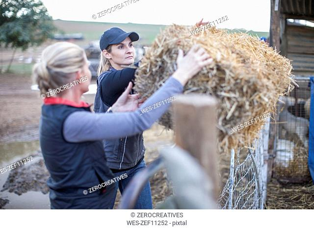 Two women working on a farm with hay