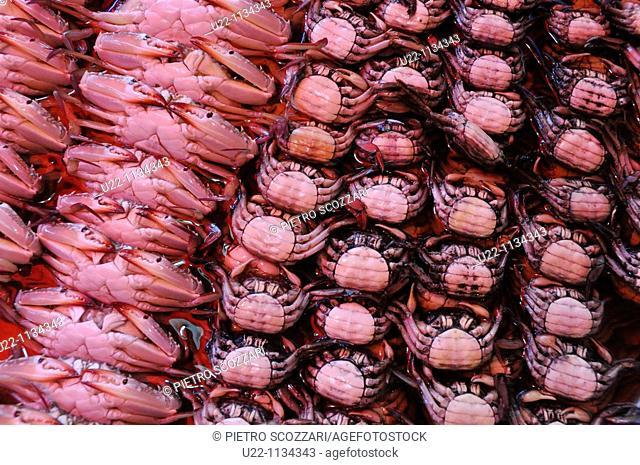 Pattaya (Thailand): crabs sold at the Naklua market