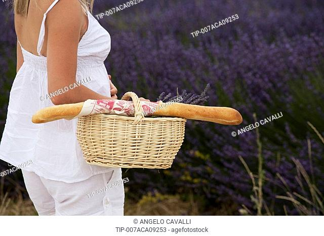France, Provence. Woman in lavender field