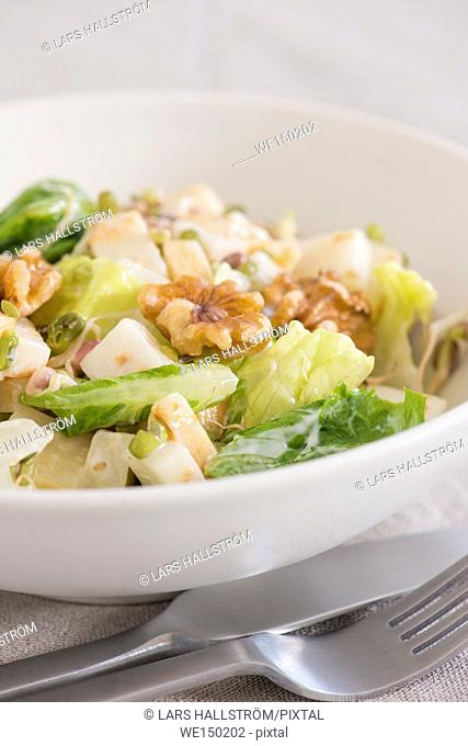 Waldorf salad served in a white bowl. Close up of traditional american food with vegetables, fruit and nuts