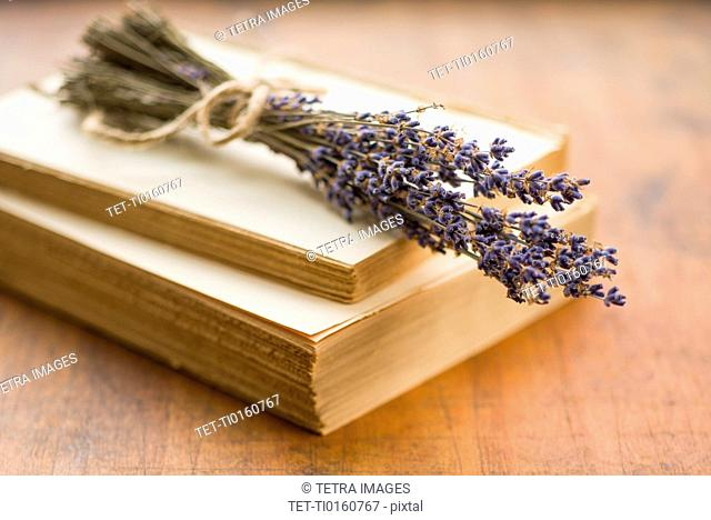Antique book with lavender