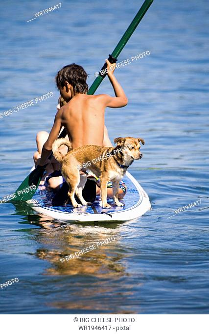 Children and a dog on a paddle board