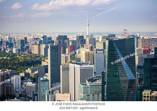 Japan, Tokyo City, Marunouchi district, Skytree Tower