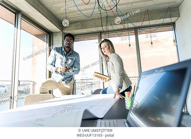Two colleagues working on plan at table in office
