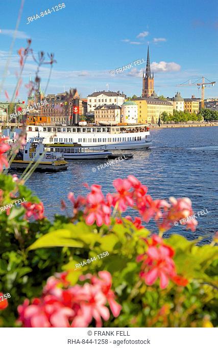 City skyline and flowers, Stockholm, Sweden, Scandinavia, Europe
