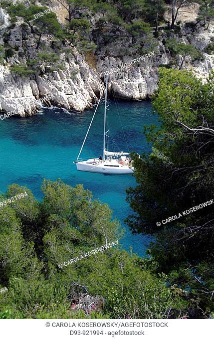 F, France, Provence, Mediterranean Sea, Calanques, Calanque de Port-Pin, Port Pin