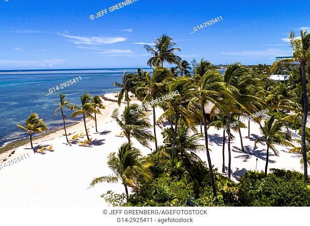 Florida, Florida Keys, Upper, Islamorada, Whale Harbor, Atlantic Ocean, Windley Key, aerial overhead view above bird's eye