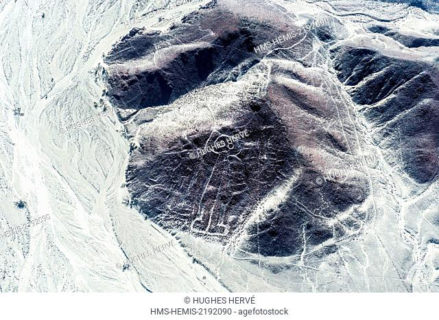 Peru, Ica Region, Nazca Desert, the Nazca Lines (5th-7th century), listed as World Heritage site by UNESCO, the geoglyphs are large figures drawn on the ground