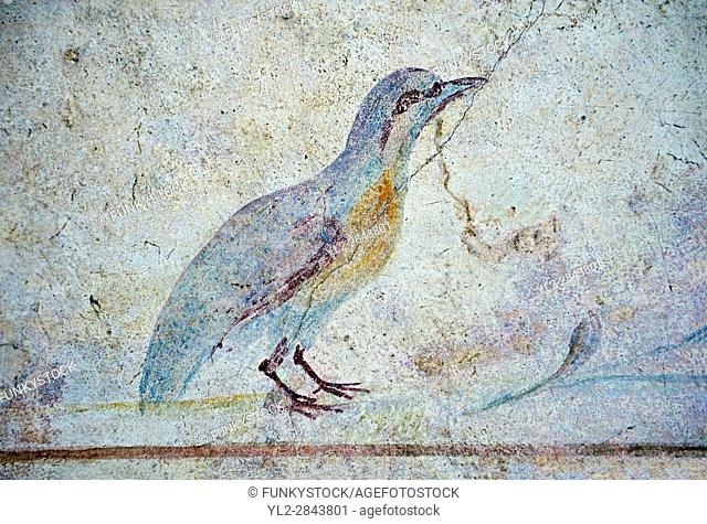 Roman Fresco of an exotic bird from The Large Columbarium in Villa Doria Panphilj, Rome. A columbarium is usually a type of tomb with walls lined by niches that...