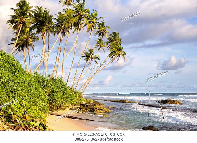 Asia, Sri Lanka, Indian Ocean, Weligama, fishing village, beach and coconuts trees