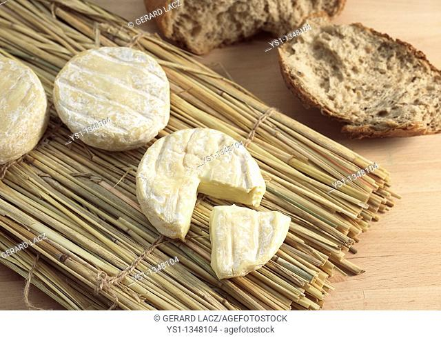 SAINT MARCELLIN, A FRENCH CHEESE MADE FROM COW'S MILK
