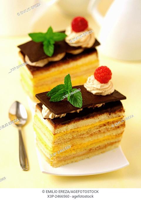 Sponge cake with custard and tiramisu