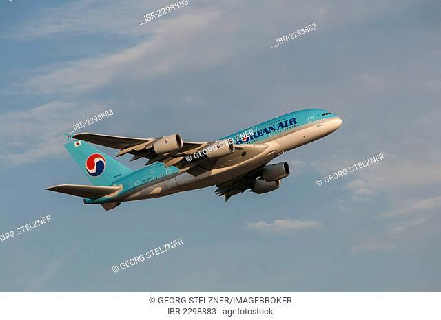 Airbus A380-861 of Korean Air taking off from Frankfurt Airport, Frankfurt am Main, Hesse, Germany, Europe