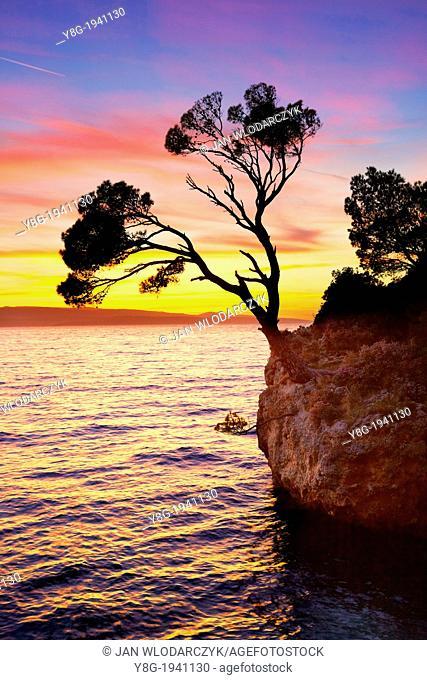 Croatia - Makarska Riviera Coast, Brela Stone on the beach, landscape at sunset time, Dalmatia, Croatia