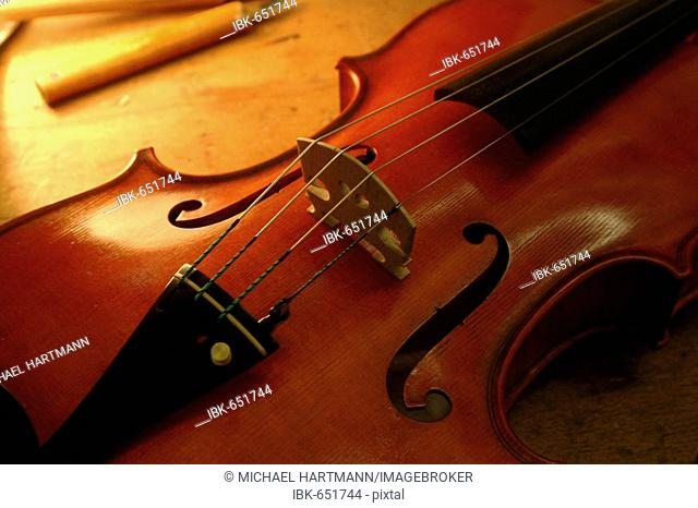 Violin, F-Holes and strings
