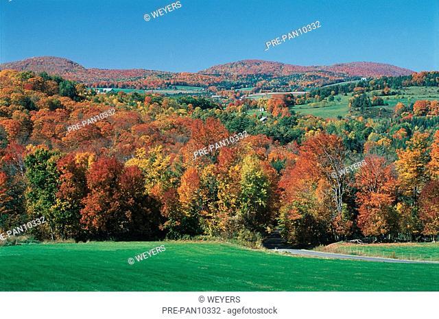 USA Vermont Herbstlandschaft Herbstwald Indian Summer