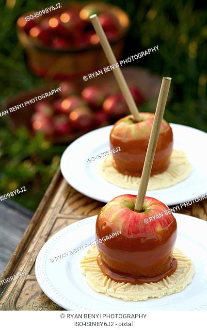 Two toffee apples on plates