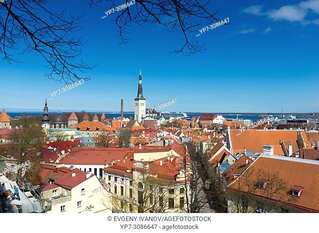Panorama of Old Town of Tallinn, Estonia