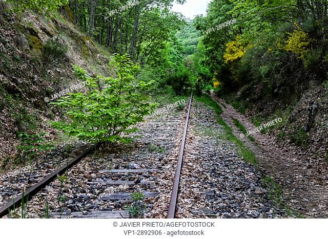 Green railway. Routes of the abandoned railway route of the Route of the Silver that worked between 1890 and the years 80 of century XX
