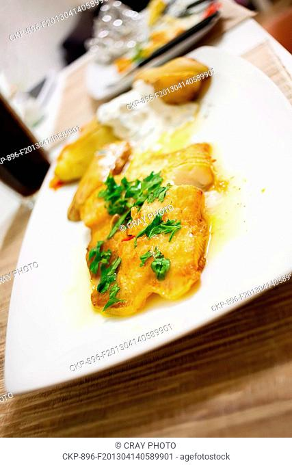 Grilled halibut with lemon sauce and parsley. (CTK Photo / Cray Photo)