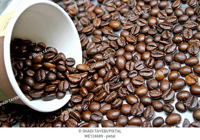 Coffe beans and coffee cup