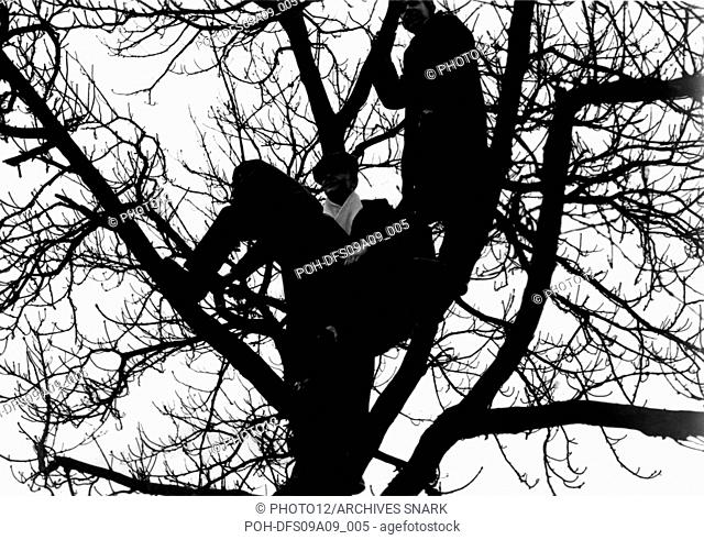 Riots in Paris, demonstrators in a tree February 1934
