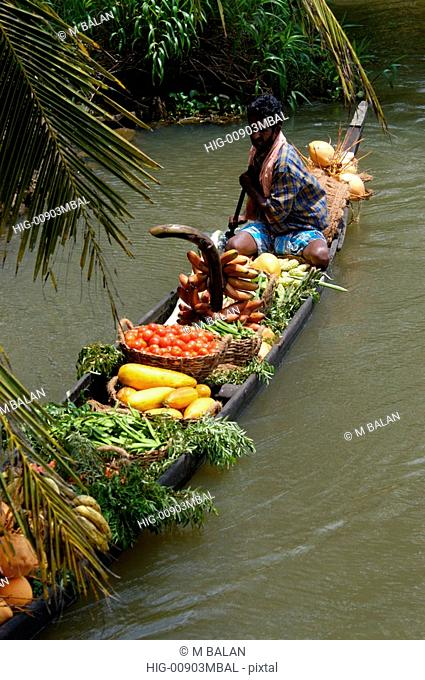 LOCAL VEGETABLE SALESMAN IN COUNTRY BOAT, KUTTANAD, ALAPPUZHA