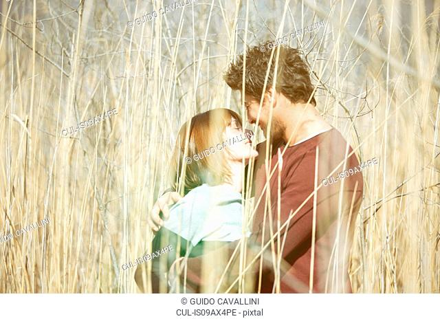 View through tall grass of couple face to face hugging, smiling
