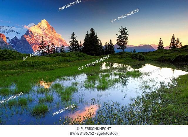 alpine lake with mount Eiger, Switzerland, Bernese Oberland