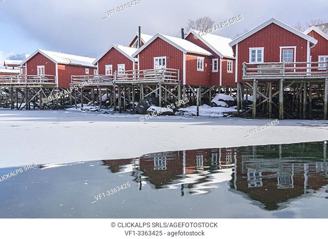 Traditional 'rorbu' houses reflected on the frozen fjord. Reine, Lofoten district, Nordland county, Northern Norway, Norway