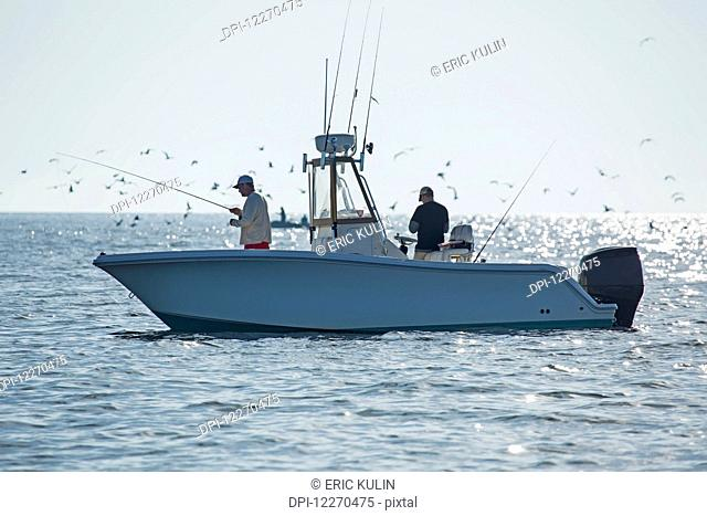 Fishing for stripers off the Atlantic coast; Massachusetts, United States of America