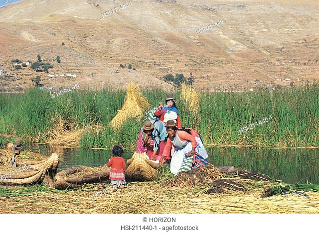 Bolivian women harvesting at Lake Titicaca Peru, Bolivia