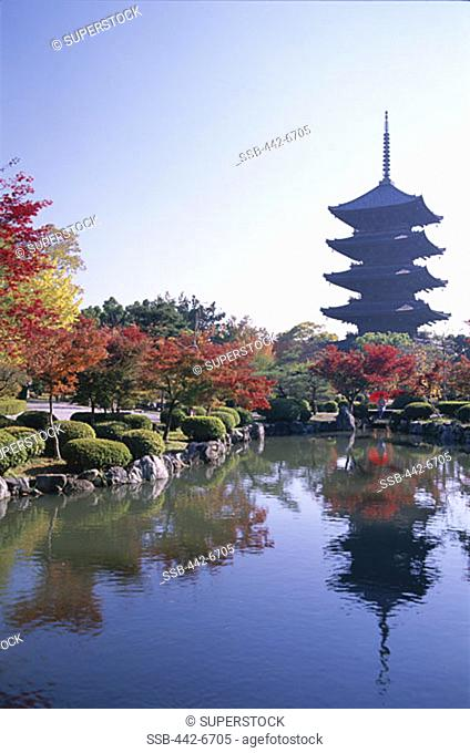 Autumn Leaves and Five-story Pagoda, Toji Temple (Kyo-o-gokoku-ji), Kyoto, Honshu, Japan
